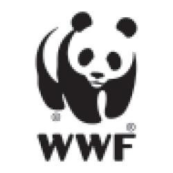 Godzina dla Ziemi WWF #GODZINADLABAŁTYKU